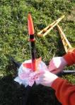 Rocket launch in back yard